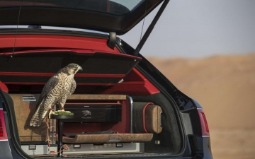 Bentley Bentayga Falconry 12