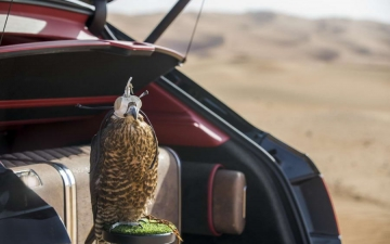 Bentley Bentayga Falconry 15