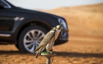 Bentley Bentayga Falconry 21