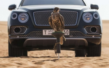Bentley Bentayga Falconry 29