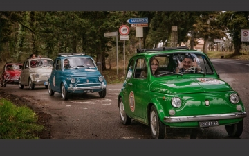 Fiat 500 currency 15