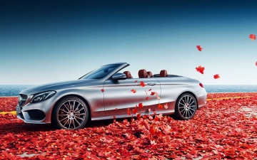 Mercedes welcome 10
