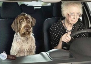 Elderly drivers 21