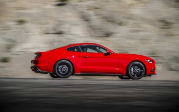 Ford Mustang 10 Mil 16
