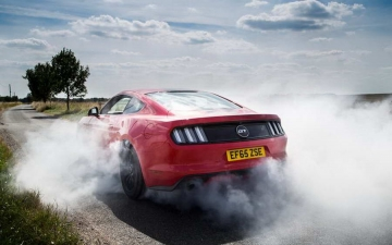 Ford Mustang 10 Mil 22