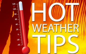 Hot Weather tips 12